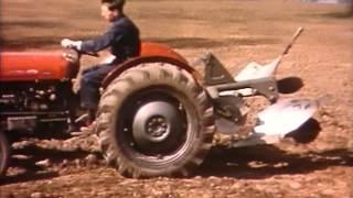 Massey Ferguson 1950'ler
