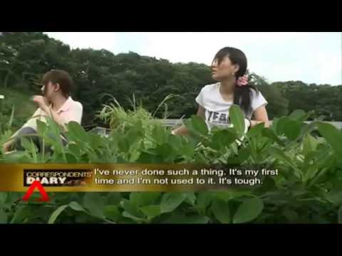 Yeni Nesil Japon Çiftçiler